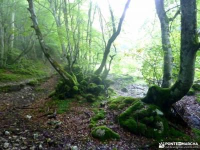 Urbasa-Andía;Aizkorri-Aratz;Aralar; senderismo monachil rio cazorla actividades para jovenes en mad